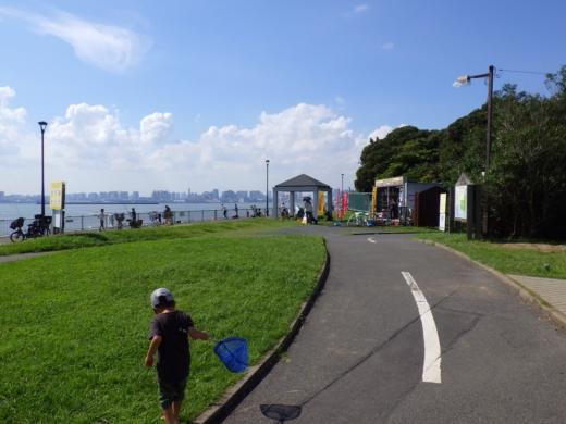 若洲海浜公園 (4)