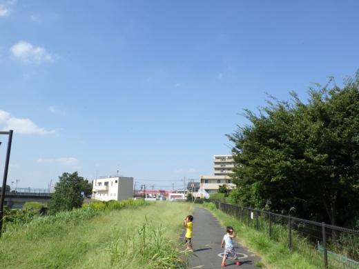 虫取り (1)