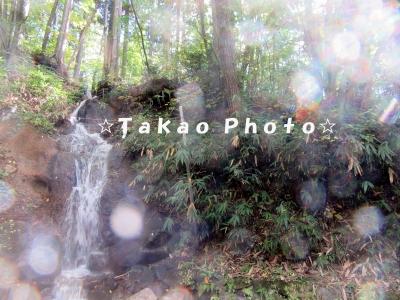 2015_1008_092013-IMG_5656のコピー