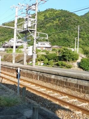 P1010131_R.jpg