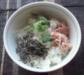 カイワレダイコンと丼ご飯