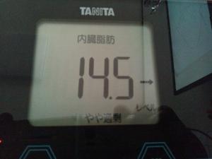 150903_内臓脂肪 (300x225)
