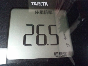 150915_体脂肪率 (300x225)