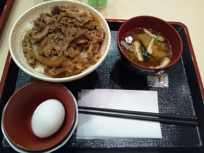 すき家の牛丼大盛 (400x300)