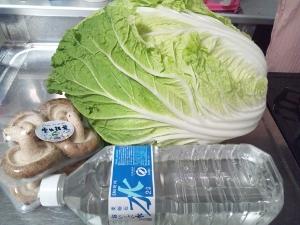 おばけ白菜 (300x225)