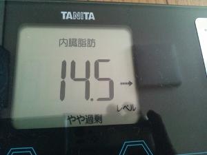 151007_朝体内脂肪 (300x225)