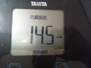 151007_体内脂肪 (300x225)