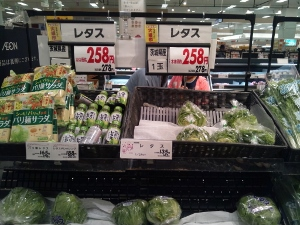 野菜激高2 (300x225)