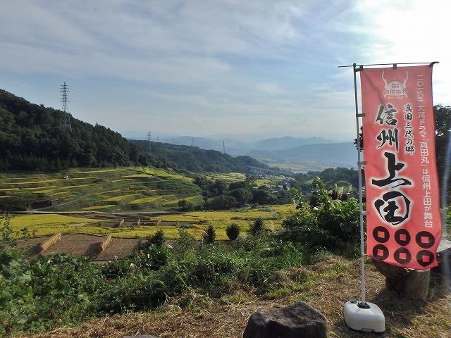 20150923稲倉棚田 (9)