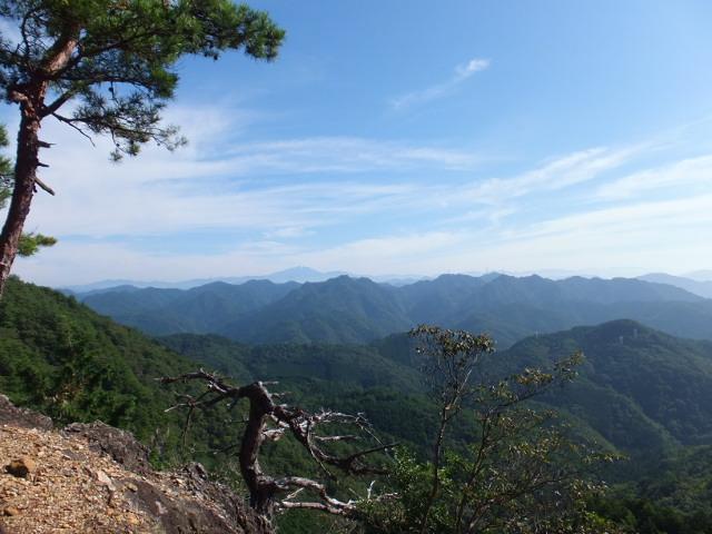 岩の上からの景色