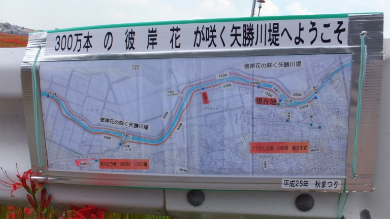 矢勝川堤MAP