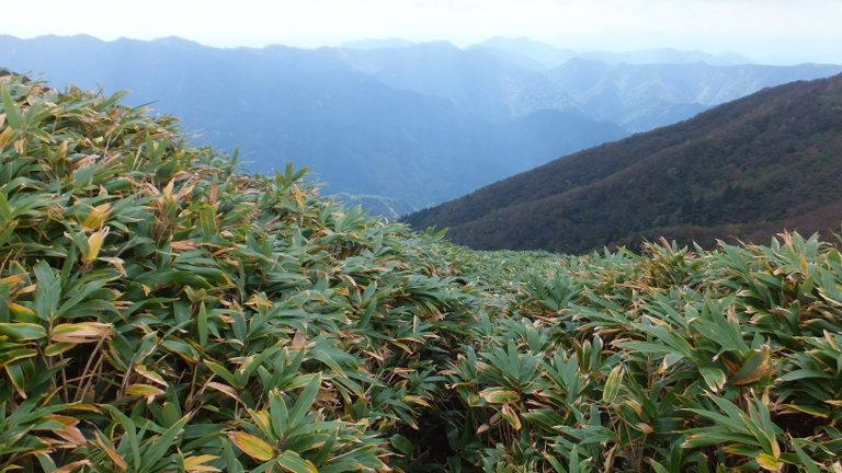 稲ガ谷コースの合流地点