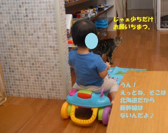 2015年8月30日④