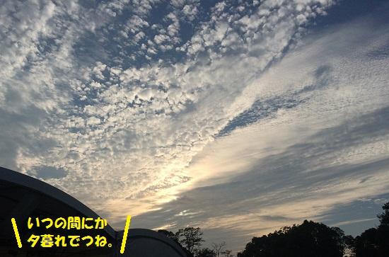 2015年9月29日④