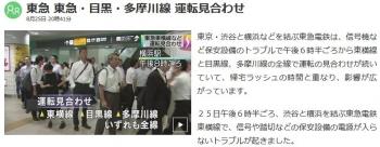 news東急 東急・目黒・多摩川線 運転見合わせ