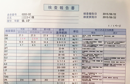 blog_000006105.jpg