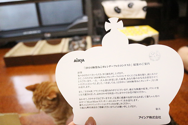 blog_000006350.jpg