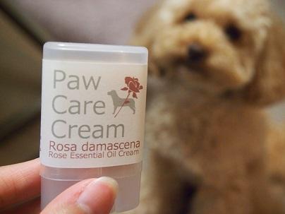 Paw care cream 01