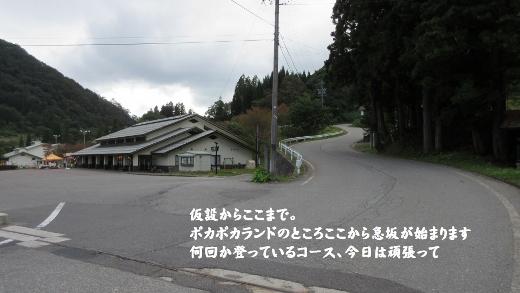 001 (520x293)
