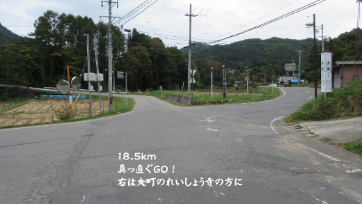 013 (520x293)
