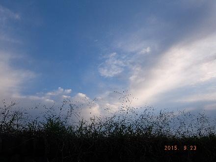 2015_09240001.jpg