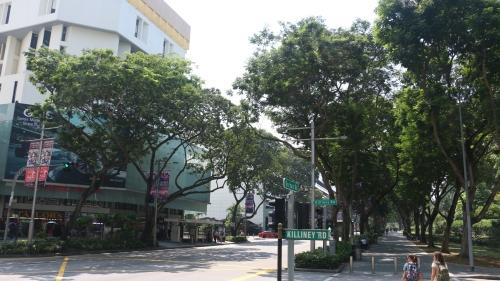 singapore36.jpg