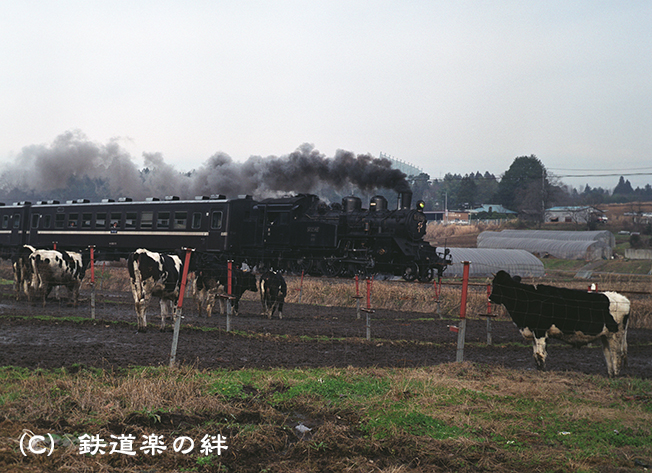 971220笹原田645N