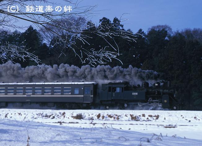 980110寺内樹氷