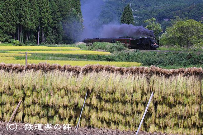 20150921上野尻5D2-02