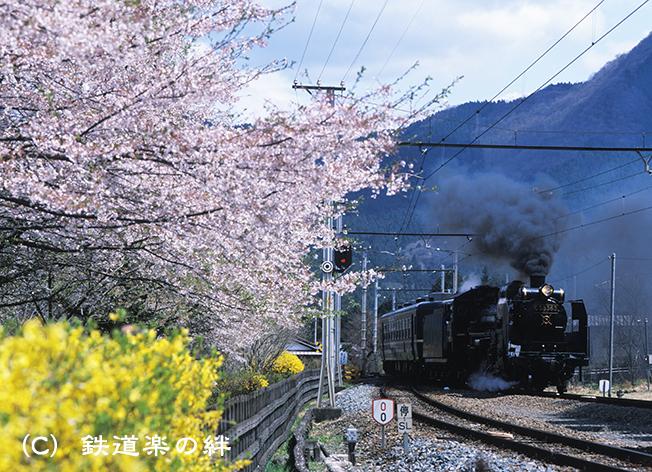 000416武州日野