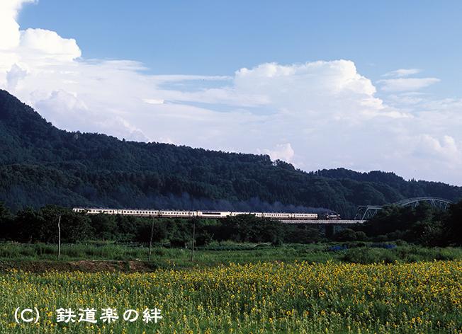 010813鹿瀬2