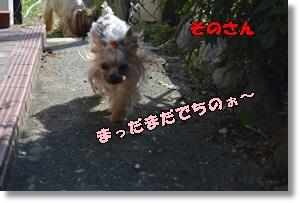 DSC_0789_20150923144359021.jpg