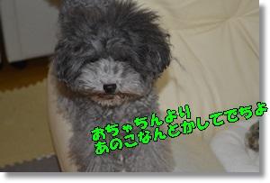 DSC_0819_2015092723085707d.jpg
