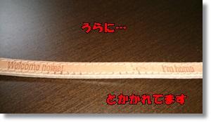 DSC_1631.jpg