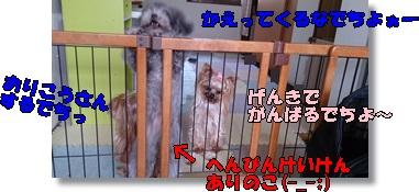 DSC_1672.jpg