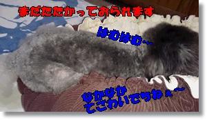 DSC_1791.jpg