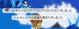 WS003246a.jpg
