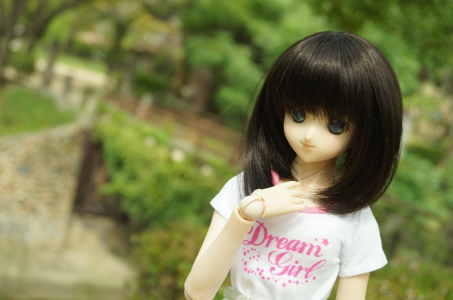 DSC09614_201509211416121a1.jpg