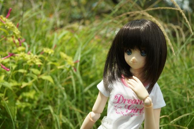 DSC09810_201509211838150e6.jpg