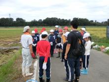 稲刈り159-2