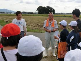 稲刈り159-16