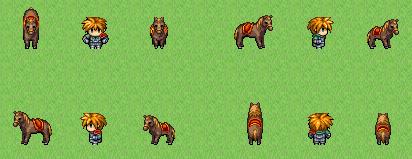 馬の大きさ比較画像