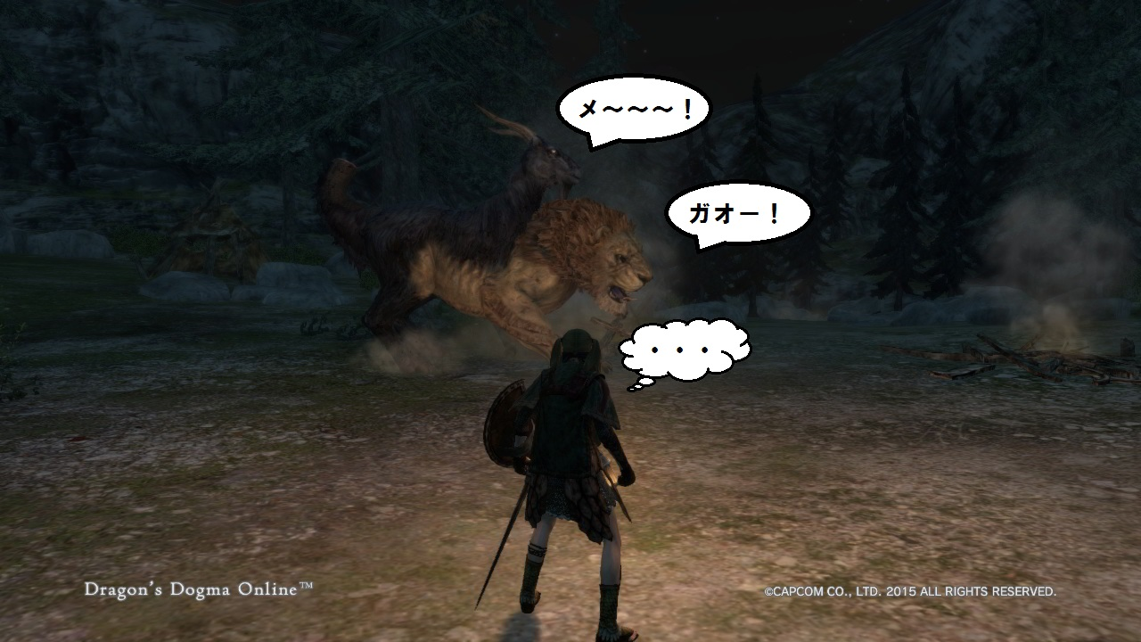 Dragons Dogma Online_30