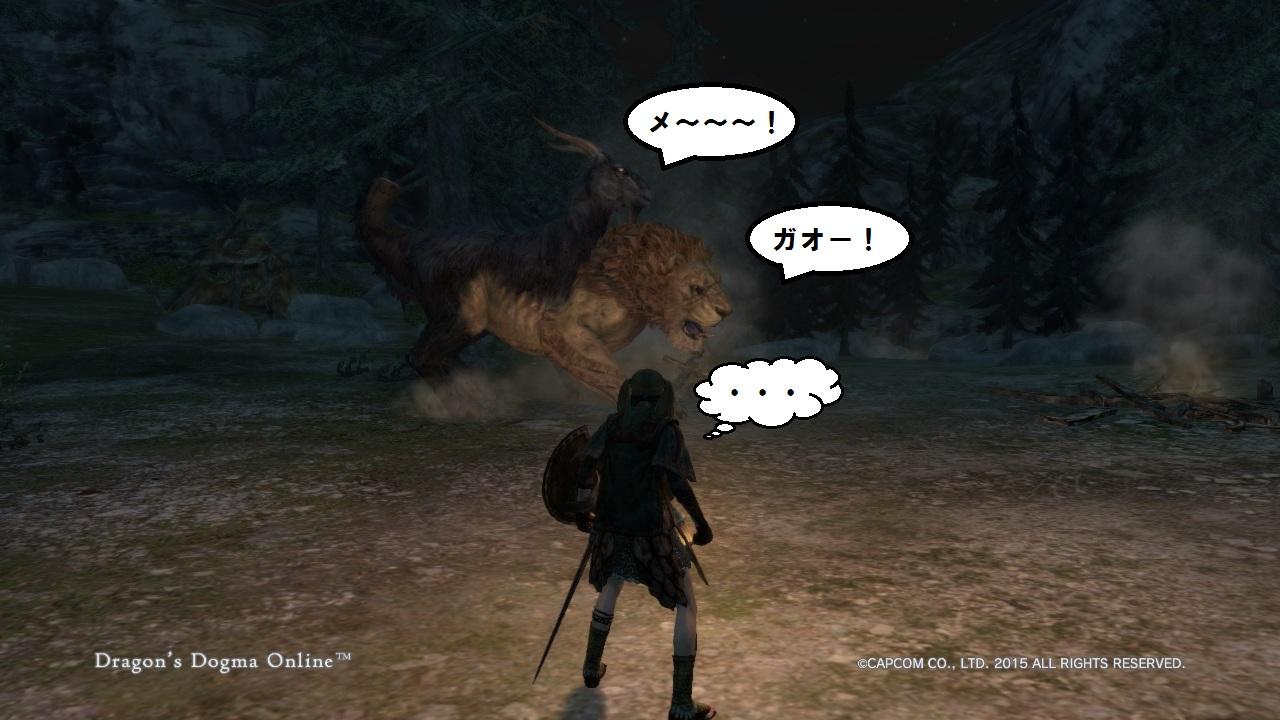 Dragons Dogma Online_30