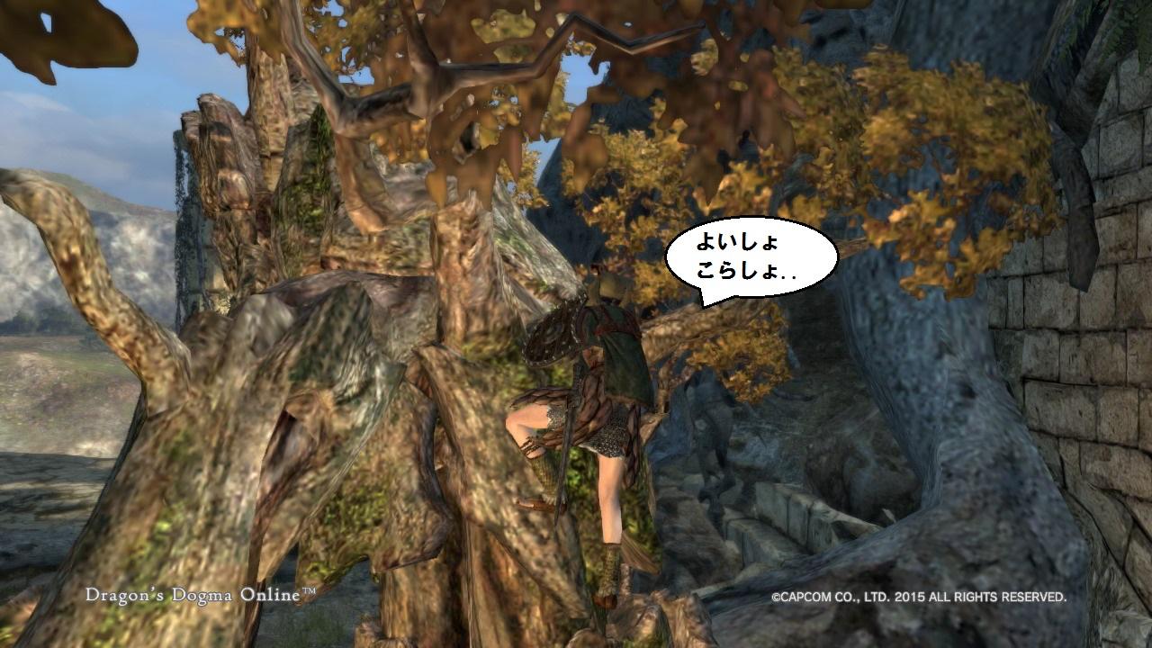Dragons Dogma Online_23