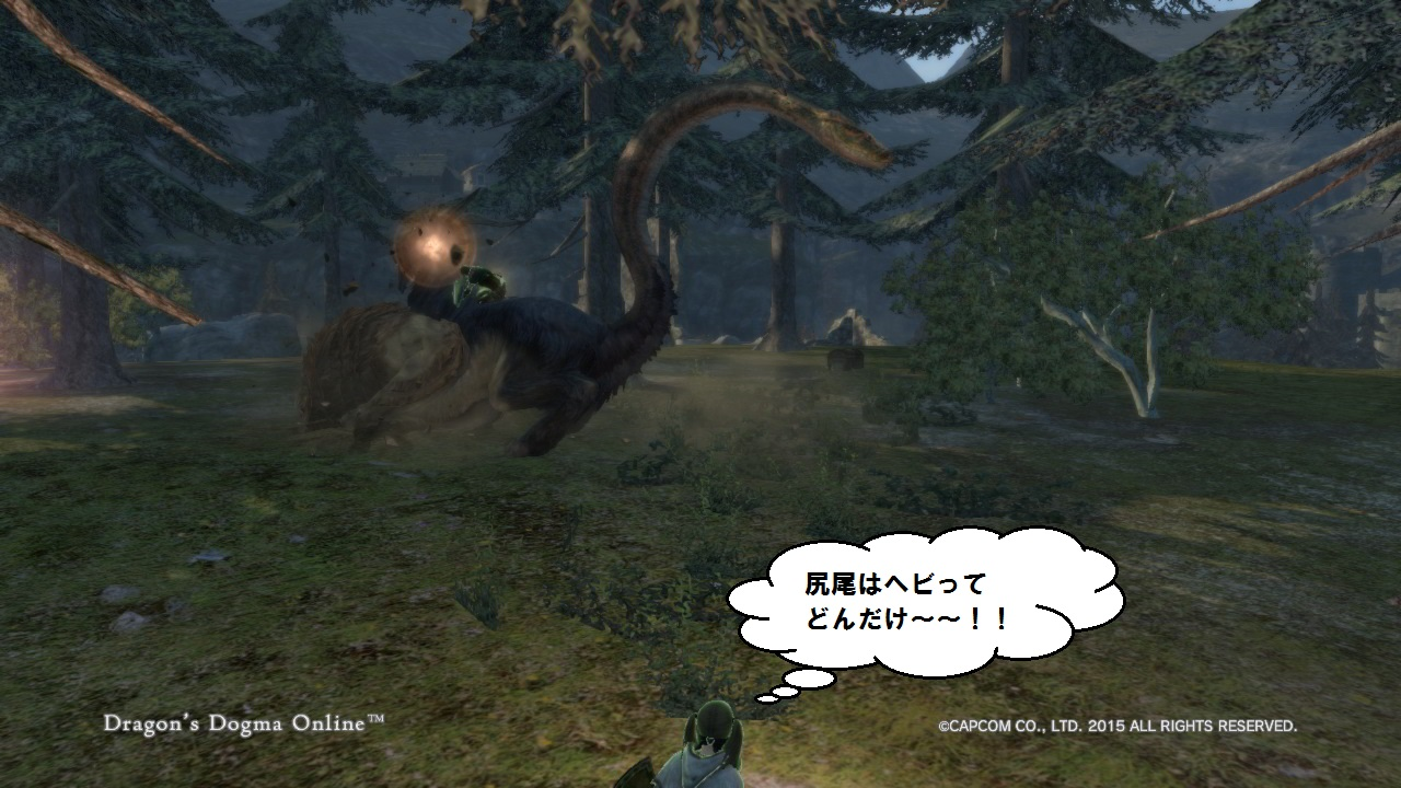 Dragons Dogma Online_31