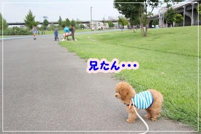 IMG_6608.jpg