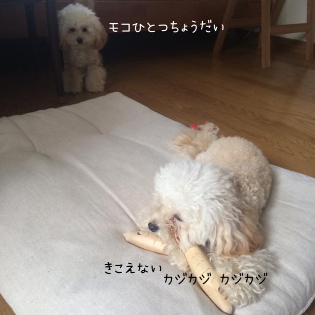 モコはジャイ子なの?4