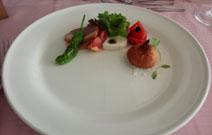 seahorse1