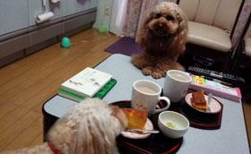 もうお茶の時間?